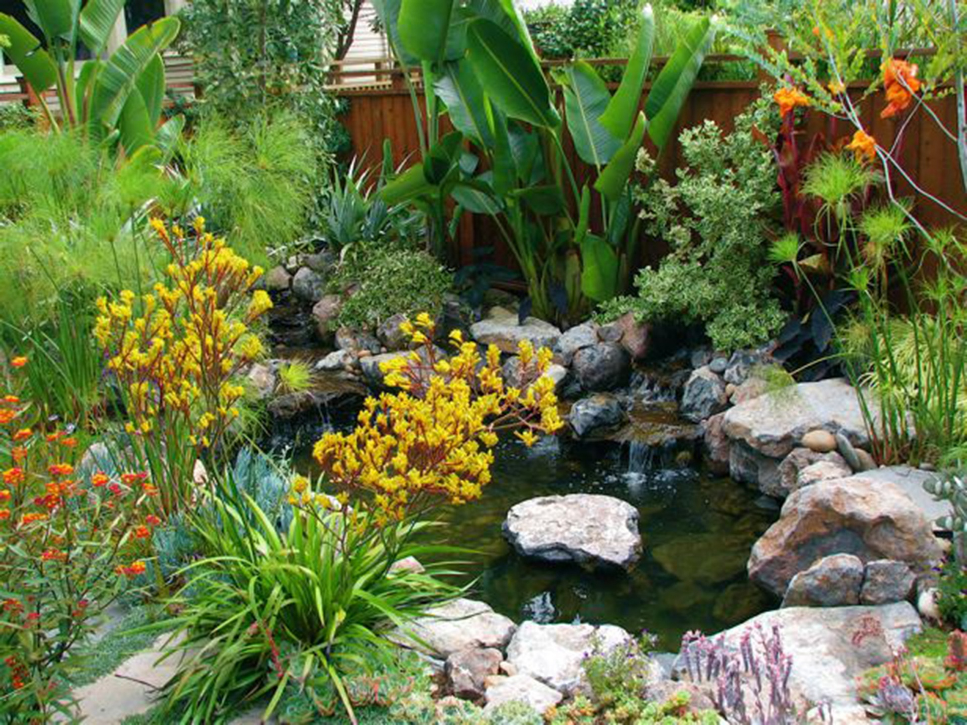 Bay Area Garden Design With A Worldly Touch
